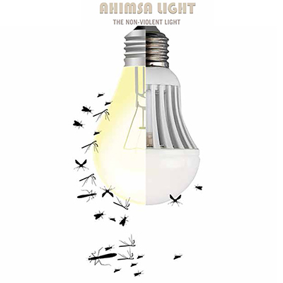AHIMSA LIGHT